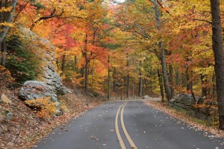 desoto_road